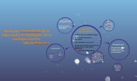 Copy of Hacia una reformulación de la etapa anal y su vinculación co