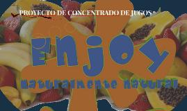 PROYECTO DE CONCENTRADO DE JUGOS