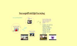 BPV les 5 Sollicitatiegesprek