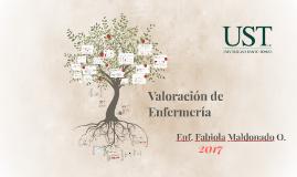 Valoración de Enfermería 2017