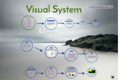 Visual System Presentation