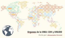 Organos de la ONU