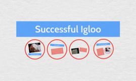 Successful Igloo