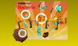 Bacteria 7-2.3