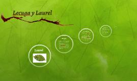 Lecuga y Laurel
