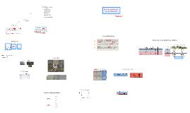 Copy of El papel de la proteína de choque térmico DnaK en la determi
