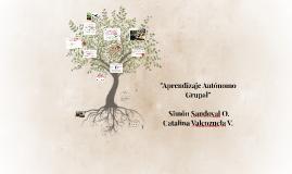 """""""Aprendizaje Autonomo Grupal"""""""