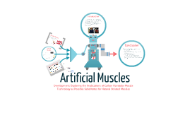 Artificial Muscles