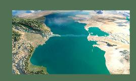 Xəzər dənizinin florası miosen dövründən məlumdur. Dənizinin