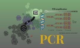 PCR (