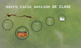 micro ciclo