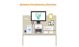 Clase 1- Ciencias Naturales/ Relación entre el sistema Circulatorio y Excretor