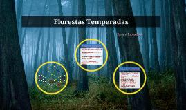 Florestas Temperadas