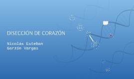 Copy of DISECCIÓN DE CORAZÓN