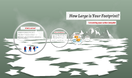 How Large is Your Footprint?