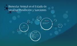 Protección Animal en Veracruz: Prevención y Sanción