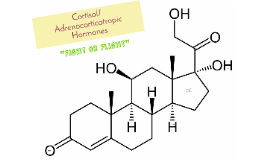 Copy of Cortisol