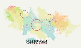 Wildevale
