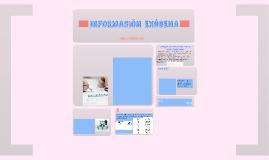 Copy of INFORMACIÓN EXOGENA