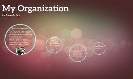 Copy of My Organization