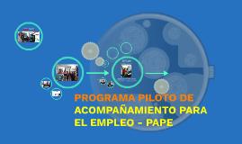 PROGRAMA DE ACOMPAÑAMIENTO PARA EL EMPLEO - PAPE