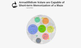 Armadillidium Vulare are Capable of Short-term memorization