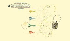 Auditoria Interna, Administrativa y Operativa