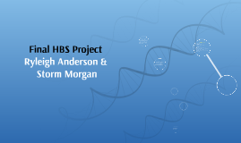 Final HBS Project