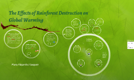 The Effects of Rainforest Destruction on Global Warming