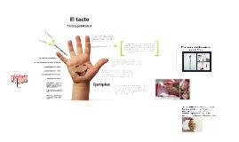 Copy of El sentido del tacto y la Publicidad