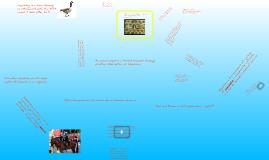 Copy of Animal Behavior