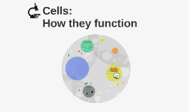 Cells: Function