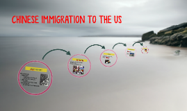 CHINESE IMMIGRATION TO THE US