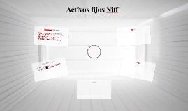Activos fijos Niff