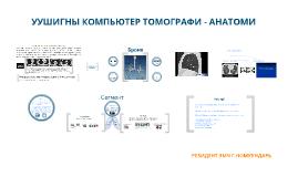 Copy of Уушигны компьютер томограф анатоми
