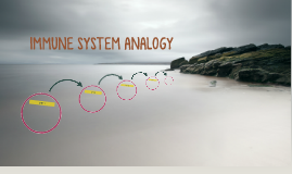 IMMUNE SYSTEM ANALOGY