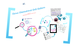 Three dimensional cell culture - state of the art