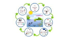 Envi Sci - Ecosystems