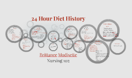 24 Hour Diet History