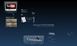 Arthropods EDIM 504