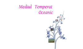 Copy of Mediul Temperat-Oceanic