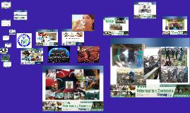 Cópia de Programa MVZ