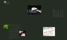 Copy of Psychology 11 Drug Campaign