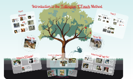 Canine Academy-Introduction to the Tellington TTouch Method