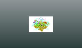 Projet Multimedia