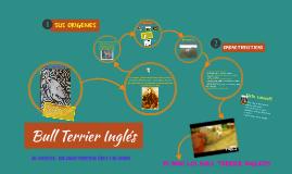 DOCUMENTAL BULL TERRIER INGLES