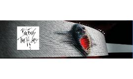 Pink Floyd The Wall análise filme