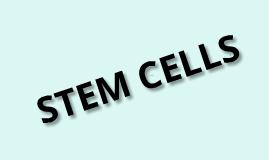Copy of Stem Cells