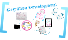 Cognitive Development - Schemas