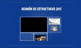 Reunión de estructuras 2015
